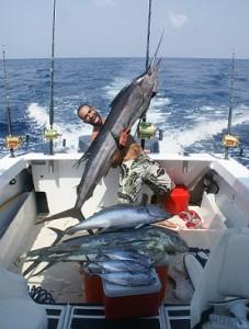 The Fish in Liberia